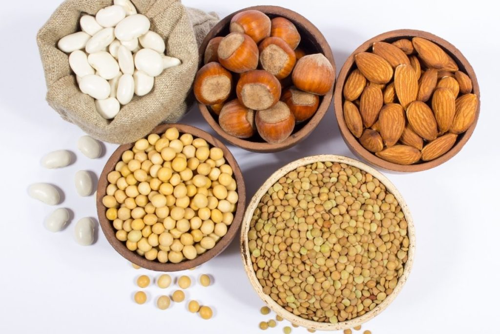 Plant Proteins: How They Fit Into a Vegan Diet