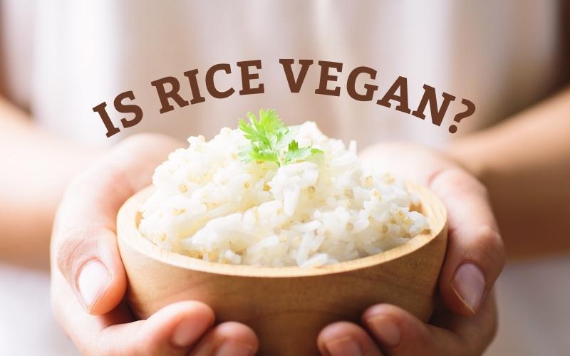Is White Rice Vegan?